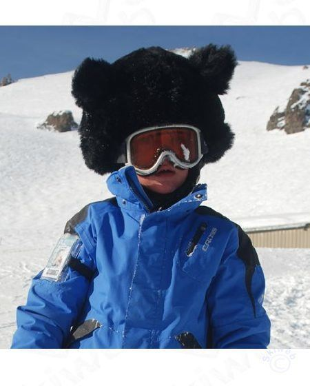bear ski helmet cover